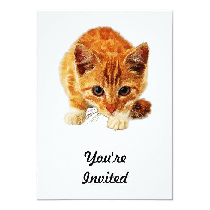Stalking Kitten Staring at You Card