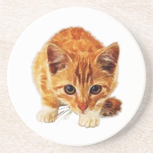 Stalking Kitten Staring at You Drink Coaster
