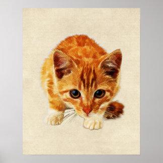 Stalking Kitten Staring at You Poster
