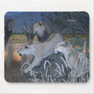 Stalking Lion Mousepad