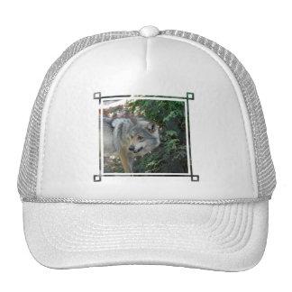 Stalking Wolf Baseball Hat