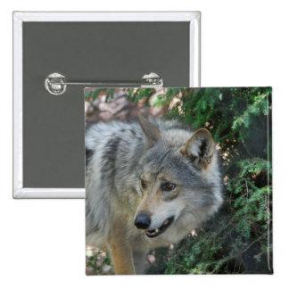 Stalking Wolf Pin