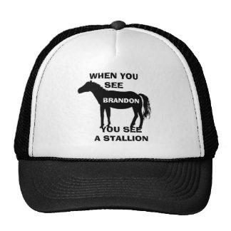 STALLION Hat