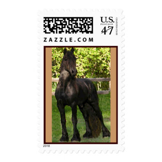Stallion Postage Stamps