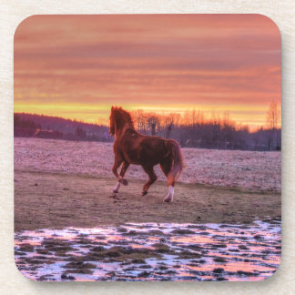 Stallion Running Home at Sunset on Ranch Beverage Coaster