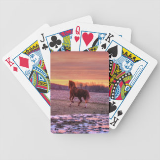 Stallion Running Home at Sunset on Ranch Bicycle Playing Cards