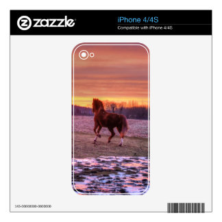 Stallion Running Home at Sunset on Ranch iPhone 4 Skins