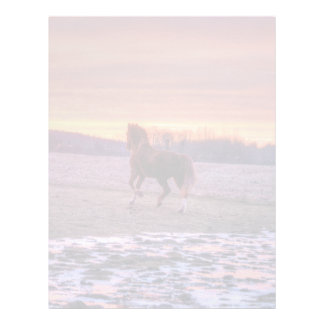 Stallion Running Home at Sunset on Ranch Letterhead