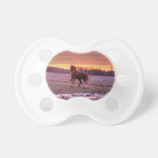Stallion Running Home at Sunset on Ranch Pacifier