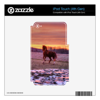 Stallion Running Home at Sunset on Ranch Decal For iPod Touch 4G