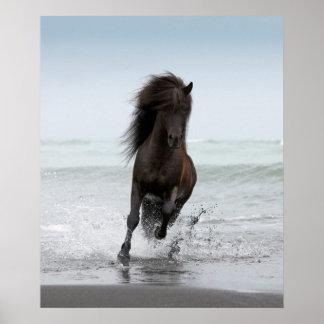Stallion Running On Beach   North Atlantic Poster
