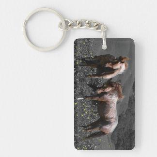 Stallion Spar Keychain