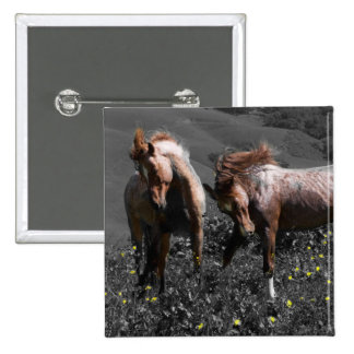 Stallion Spar Pinback Button