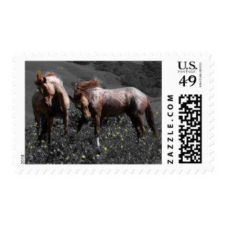 Stallion Spar Stamp