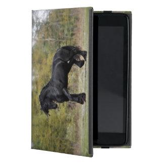 Stallion Strut iPad Mini Cover