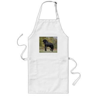 Stallion Strut Long Apron