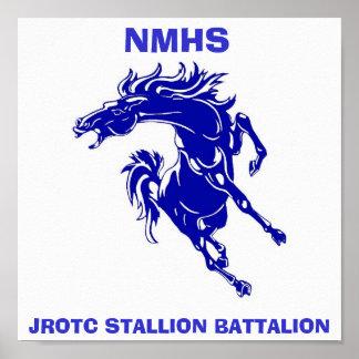 stallions poster Poster