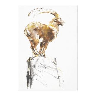 Stambecco d'Oro 2005 Canvas Print