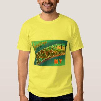 Stamford New York NY Old Vintage Travel Souvenir Shirt