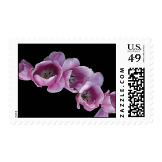 Stamp, Cascade of Purple Tulips