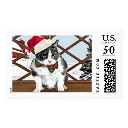 Stamp featuring kitty dressed for Xmas