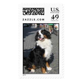 Stamp: Happy Berner in Bavaria Stamps