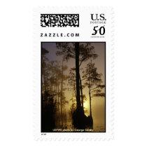 Stamp / Okefenokee National Wildlife Refuge