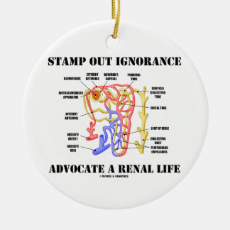 Stamp Out Ignorance Advocate A Renal Life Nephron Ceramic Ornament