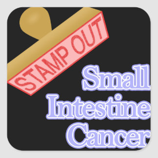 Stamp Out Small Intestine Cancer Square Sticker
