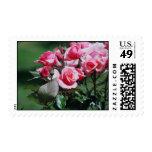 Stamp Pink Roses Cluster
