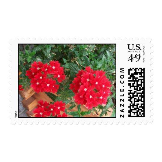 stamp postage gardenia red flower bed