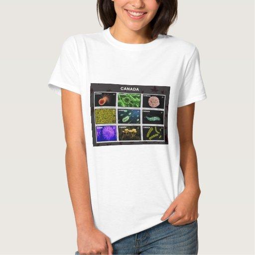 stamp tshirt