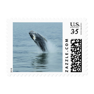Stamp - whale breaching water