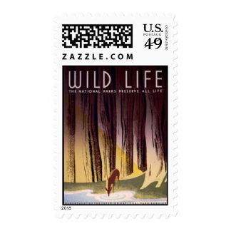 Stamp Wild Life Deer
