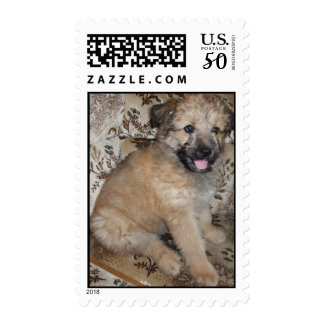 Stamp with puppy