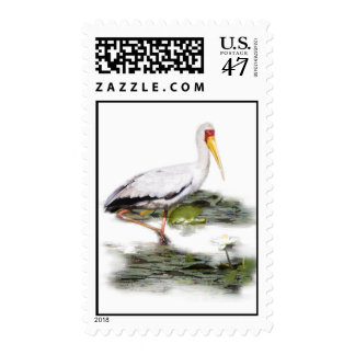 Stamp with Yellow Billed Stork from Afica