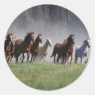 Stampede Classic Round Sticker