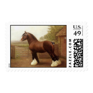 STAMPS Draft Horse Clydesdale Ready To Win Ribbons