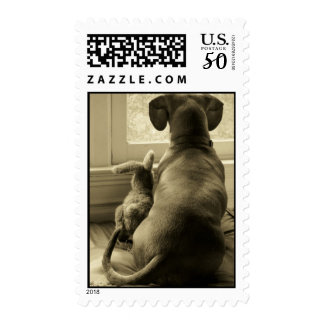 Stamps: Friends Postage