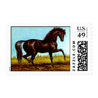 STAMPS Graceful Cantering Black Beauty Horse Field