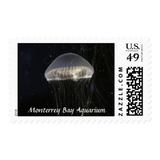 Stamps Horizontal Crystal Jelly