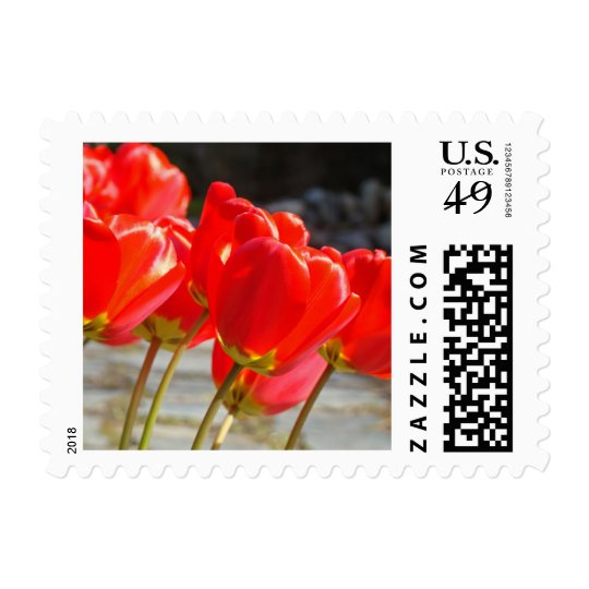 Stamps Red Tulip Flowers postage Cards Spring