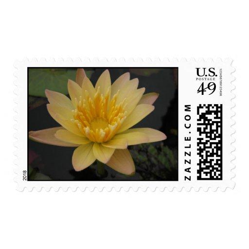 Stan Skinger Postage Stamp