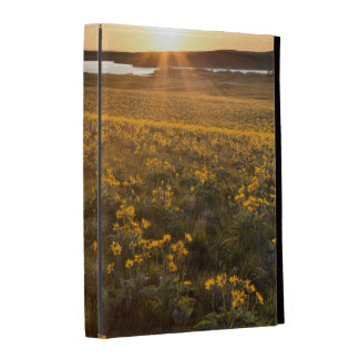 Stand Of Arrowleaf Balsamroot Wildflowers iPad Folio Cases