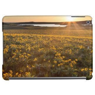 Stand Of Arrowleaf Balsamroot Wildflowers iPad Air Cases