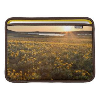 Stand Of Arrowleaf Balsamroot Wildflowers MacBook Air Sleeve
