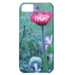 Stand Out Daisy Cover For iPhone 5C
