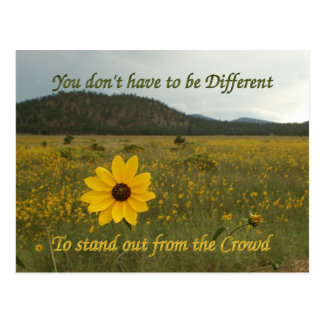 Stand Out from the Crowd Postcard