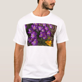 Stand Out from the Crowd T-Shirt