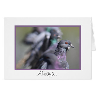 Stand Out in a Crowd - Pigeon Greeting Card